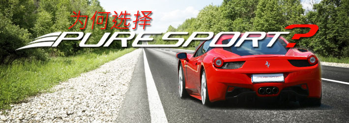 Puresport的员工会为你组织体育活动和驾驶课程:你将有机会学习如何驾驶超级跑车和方程式1赛车
